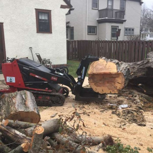 stump removal rochester mn
