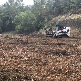land clearing rochester mn